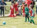 Licapar - Tournoi Foot Caulnes 10-05-18 -09917