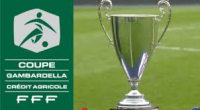 Les U19 de l'ocm iront défier le groupement Brocéliande Plélan pour le 1er tour de la gambardella le samedi 10 septembre à 15h30.