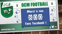 Sixmois après sa création, la page Facebook publique de l'OC MONTAUBAN Football connaît un véritable succès… et chaque jour de plus en plus ! En effet, le club vient de […]